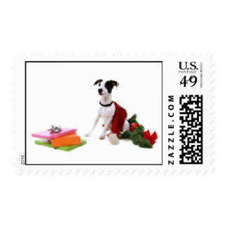 jack russel and Christmas gifts, Postage Stamp