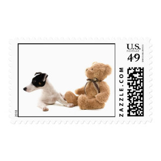 jack russel and his teddy bear stamps