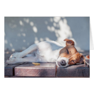 Jack Russel On Autumn Porch Card