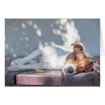 Jack Russel On Autumn Porch Greeting Card