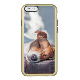 Jack Russel On Autumn Porch Incipio Feather Shine iPhone 6 Case