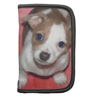 Jack Russel Terrier Puppy on Pink Organizer