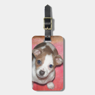 Jack Russel Terrier Puppy on Pink Tags For Luggage