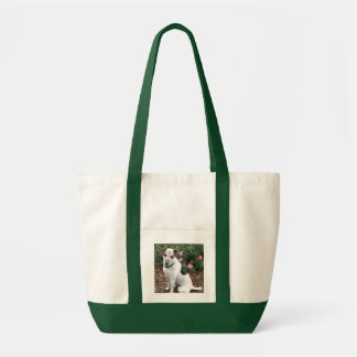 Jack Russell adorns useful tote bag