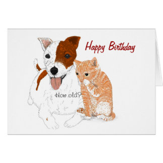 Jack Russell and Kitten Birthday Card