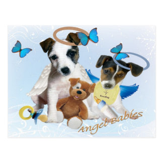 Jack Russell Angel Babies GIfts Postcard