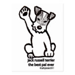 Jack Russell Best Pal Post Cards
