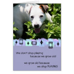 Jack Russell Birthday Greetings Stationery Note Card