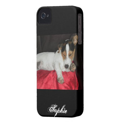 jack russell blackberry bold cover