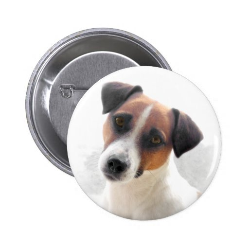 Jack Russell Button