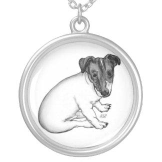 Jack Russell cachorro 10 semanas viejo Collar Plateado