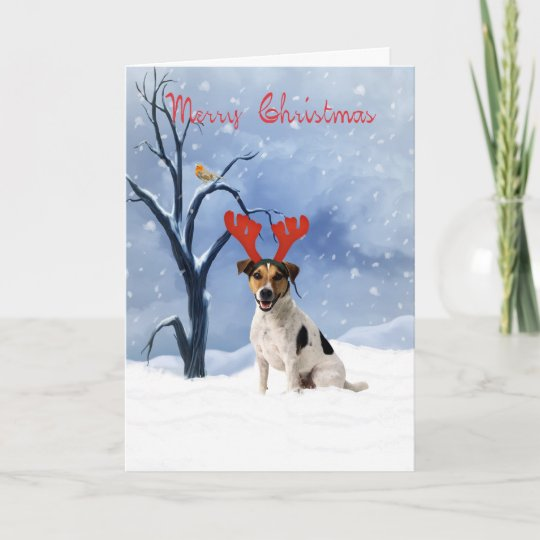 jack russell christmas cards