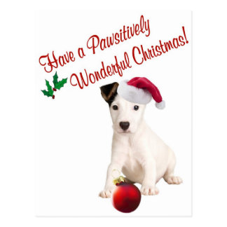 Jack Russell Christmas Wishes Postcard