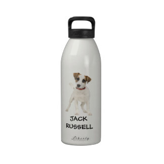 jack russell dog reusable water bottles