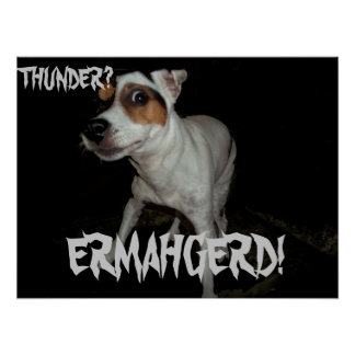 Jack Russell ERMAHGERD! Poster