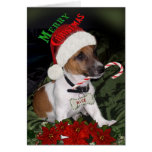 Jack Russell Naughty or Nice Cards