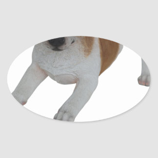 Jack Russell! Oval Sticker