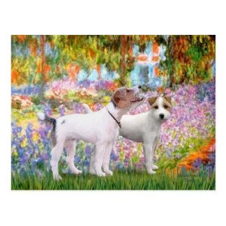 Jack Russell Pair - Garden Postcard
