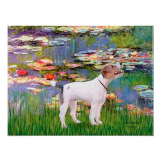 Jack Russell (Parsons Terrier)  - Lilies 2 Posters