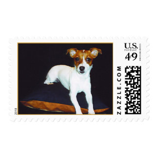 Jack Russell Princess Postage Stamps