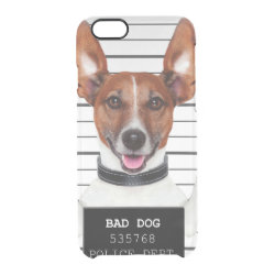 Jack russell prisoner clear iPhone 6/6S case