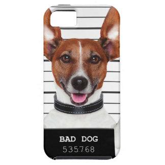 Jack russell prisoner iPhone SE/5/5s case