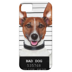 Jack russell prisoner iPhone SE/5/5s case
