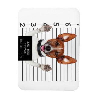 Jack russell prisoner magnet