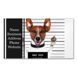 Jack russell prisoner magnetic business card