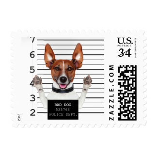 Jack russell prisoner postage