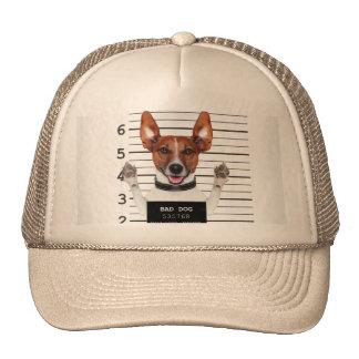 Jack russell prisoner trucker hat