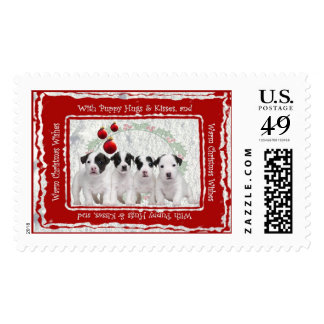 Jack Russell Puppies Christmas Wishes Postage