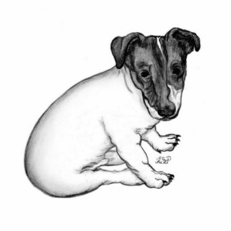 Jack Russell puppy 10 weeks old Photo Sculpture Button