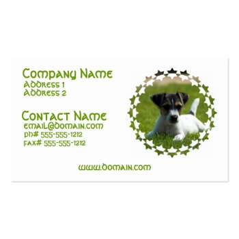 Jack Russell Puppy Business Card