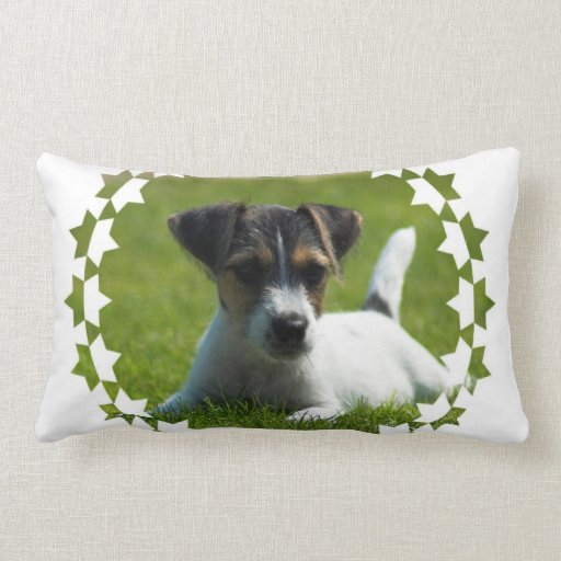 Jack Russell Puppy Pillow