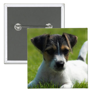 Jack Russell Puppy Square Pin