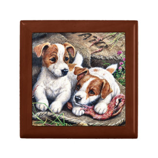 Jack Russell Pups Gift Box