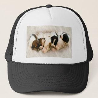 jack russell pups trucker hat