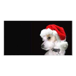 Jack Russell Santa Photo Card Template