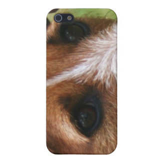 Jack Russell Speck iphone 4 Case