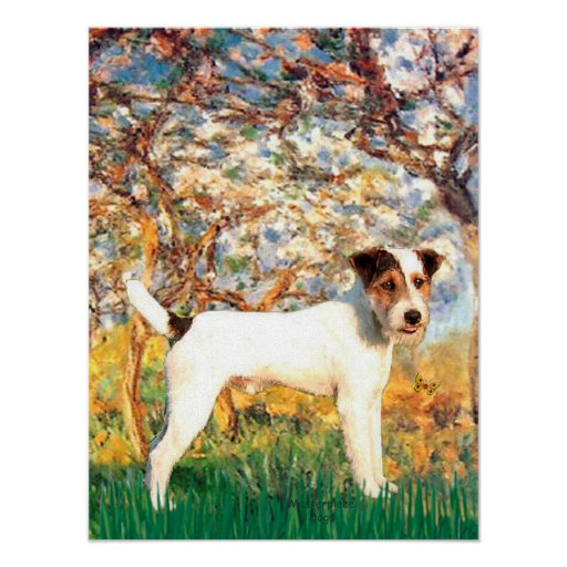 Jack Russell (T) - Spring Poster