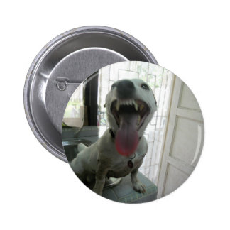 Jack Russell Terier Pin