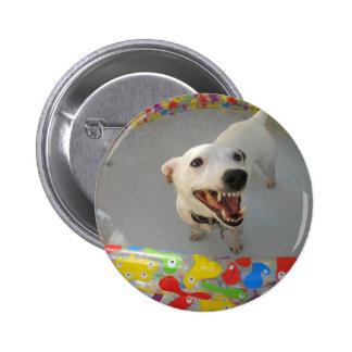 Jack Russell Terier Pinback Button