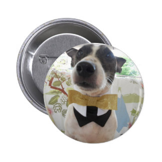 Jack Russell Terier Pins