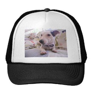 Jack Russell Terier Trucker Hat