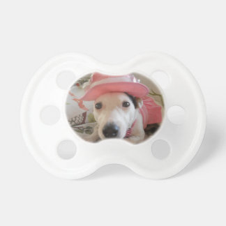 Jack Russell Terier Pacifiers