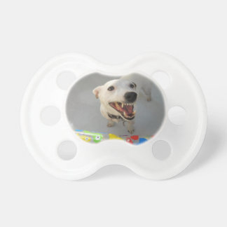Jack Russell Terier Pacifier