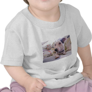 Jack Russell Terier Tshirt