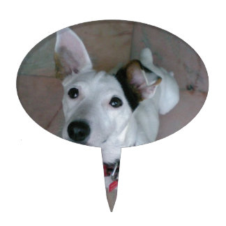 Jack Russell Terrier ケーキトップ