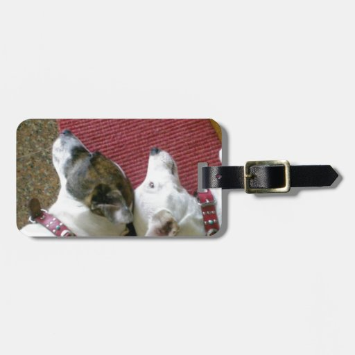 Jack Russell Terrier ラゲッジネームタグ